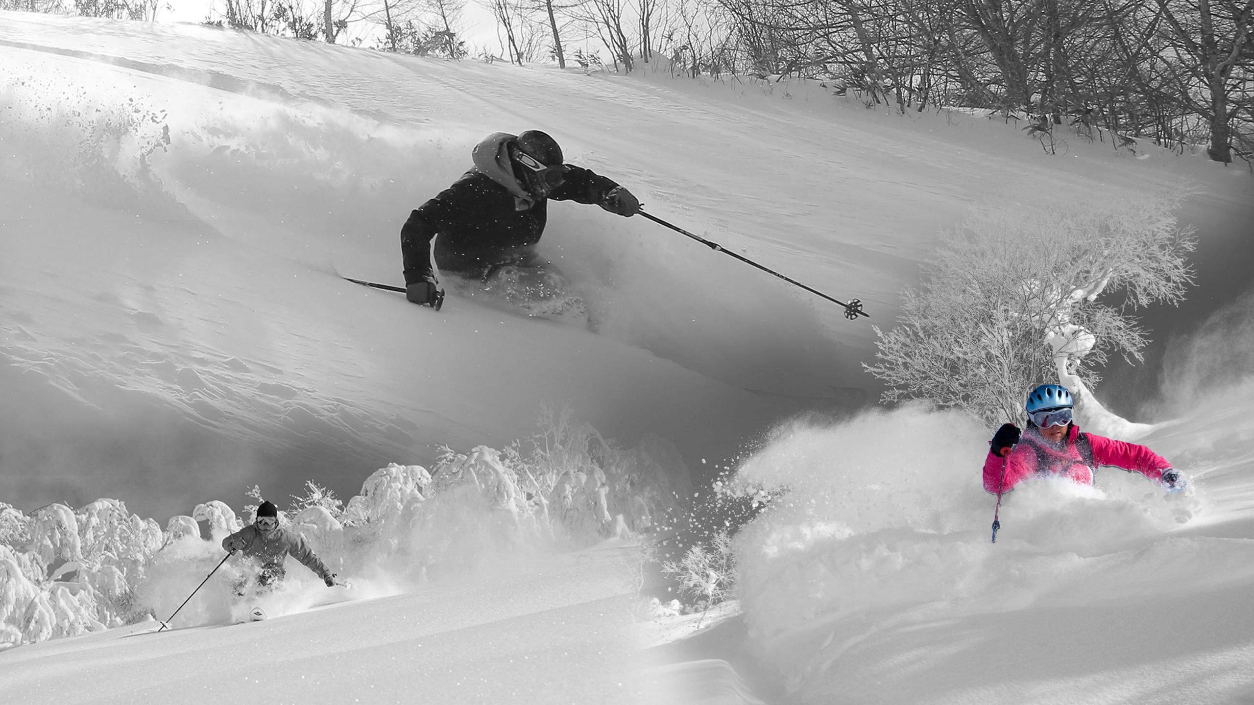 Header Image - 大学スキー研究会